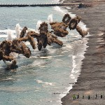 US and S. Korean Military Storm Simulated North Korean Beach